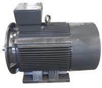 空压机变频专用电机